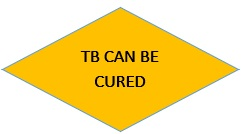 tb can be cured